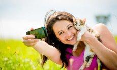 7 nippi, kuidas pildistada ennast koos kassiga!