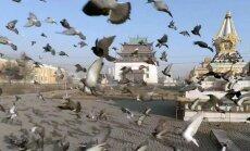 VIDEOD: reisi koos drooniga! Portaal kogub kokku maailma parimad vaatamisväärsuste droonivideod