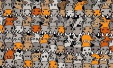 PILTMÕISTATUS: Pane end proovile, kas suudad lehmakarja seast koera märgata?