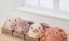Vahva idee! Jaapanlased leiutasid kodu korras hoidmiseks loomasõpradele armsa lahenduse!
