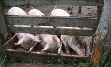 Loomakasvatajad said euroliidust erakorraliselt mitusada miljonit eurot