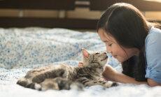 Viis käitumisviisi, mida kass kasutab, kui ta tunneb end unarusse jäetuna