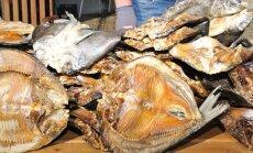 Lüübnitsa sibula- ja kalalaat 2016.