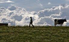 Британский фермер наладил продажи чистого воздуха богатым китайцам