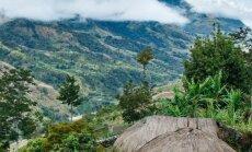 Uus-Guinea