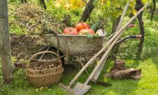 Tee oktoobrikuus aiatöid lustiga, lase samal ajal silmal puhata kaunitel sügisvärvidel