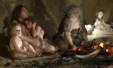Neandertallaste y-kromosoom inimestele edasi ei kandunud