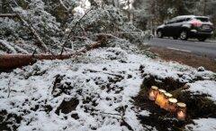 FOTOD: Pärnamäe avariikohal põlevad küünlad, autod aeglustavad õnnetuspaigast möödudes