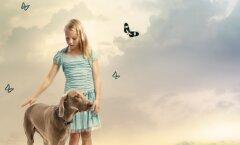 Kui lapse lemmikloom sureb, siis kuidas sellest lapsega rääkida
