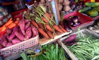 Vanad ja head toitumisnipid: kehakaalu reguleerimine aedviljatoiduga