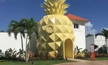 VIDEO: Kes elab vee all ananassi sees? Käsna-Kalle fännid saavad nüüd ananassikujulises hotellis ööbida