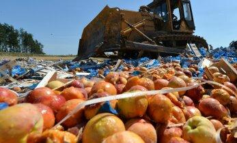 Россия озвучила ущерб западных поставщиков от эмбарго