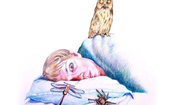 Inimesed vajavad üha enam rahusteid ja unerohtusid