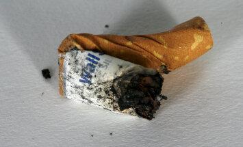 Mida teeb vette visatud suitsukoni?