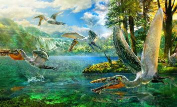 Hiinast leiti senitundmatu sisalik: pelikanilaadne lendlohe