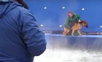 VIDEO: Loomasõprade kauaoodatud filmi