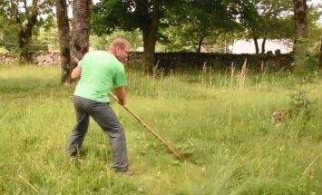 MEIE MAA VIDEO: Muruniidukit pole? Lambaid ka mitte? Vaata nippe kiiresti kasvava rohuga võitlemiseks