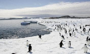 Antarktika - koht, kus peab elu jooksul ära käima