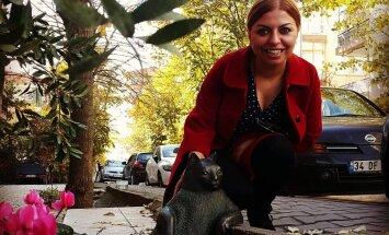 Воры вернули на место скульптуру кота в Стамбуле
