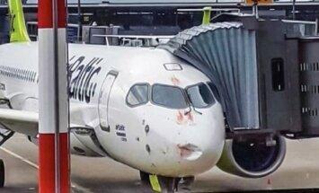 ФОТО: Самолет airBaltic cтолкнулся со стаей птиц
