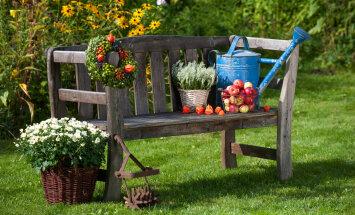 Loe, millised aiatööd tuleb ette võtta augustis