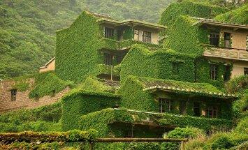 GALERII: loodus katab kõik ehk mis juhtub siis, kui üks Hiina linnake hüljatakse