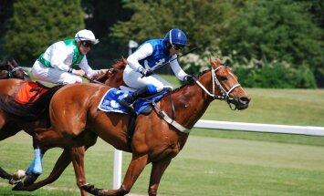 Hobuste võidujooks ja investeerimine – nagu kaks tilka vett