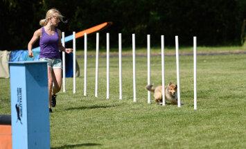 Eesti tippsportlane: Kolme lapse kõrvalt koeraspordiga maailma tippu