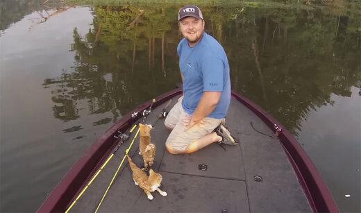 LIIGUTAV LUGU: Kaks meest läksid kalale, kuid leidsid hoopis hüljatud kassipojad