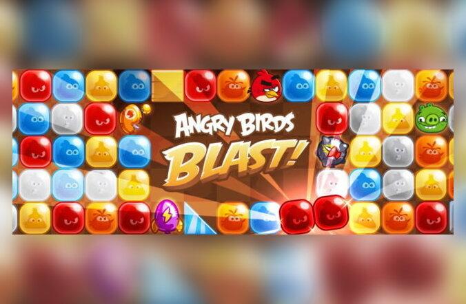 Haltuura! Täna ilmuva Angry Birdsi mobiilimängu võib vist vahele jätta