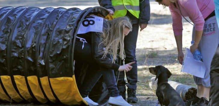FOTOD: Sütiste parkmetsas tehti täna võidu koerusi!
