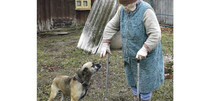 Ennast ravida või koerale rohtu anda?