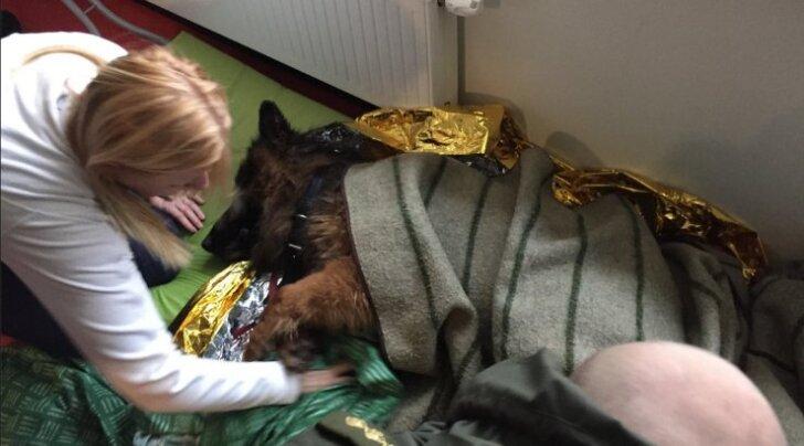 Õnneliku lõpuga lugu toob pisara silma: Eesti korrakaitsjad päästsid jääaugust alajahtunud koera