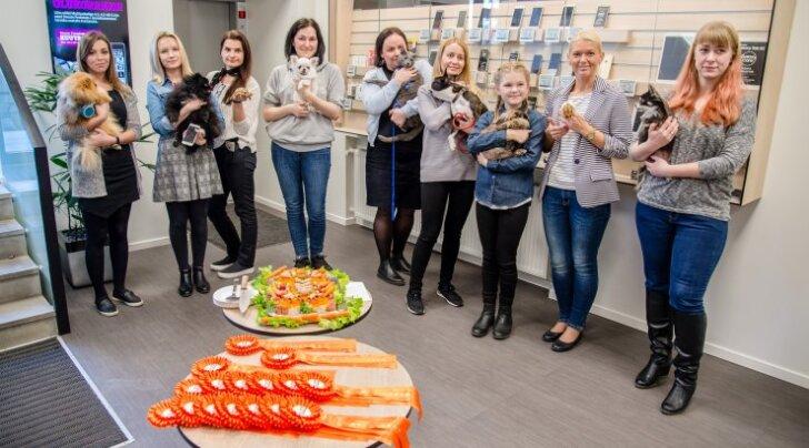 Nunnu GALERII: Tallinnas tähistati lemmikloomade päeva kontoritsirkusega