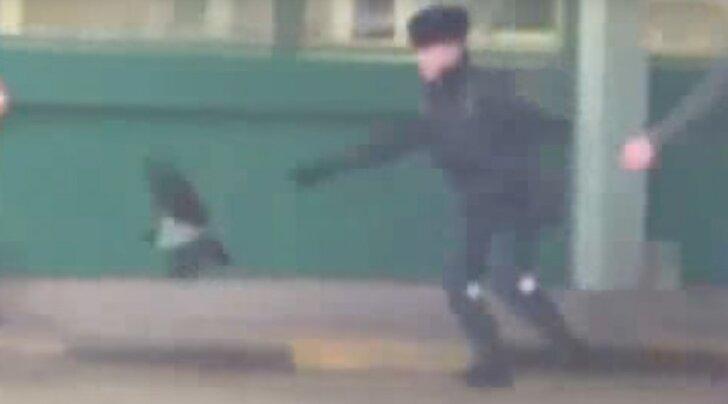 Eesti-Vene piiripunkti passivargast varese juhtumist ilmus välja lõbus video