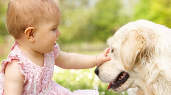 5 olulist punkti: mida koerte ja beebide tutvustamisel vältida?