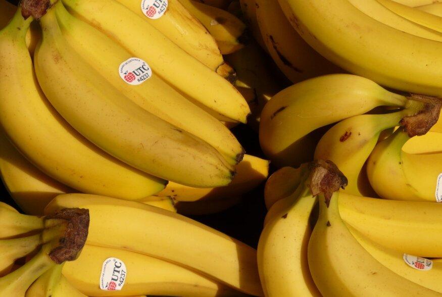 NIPID! Kuidas hoida banaane nii, et nad püsiksid kaua ilusad ja värsked?