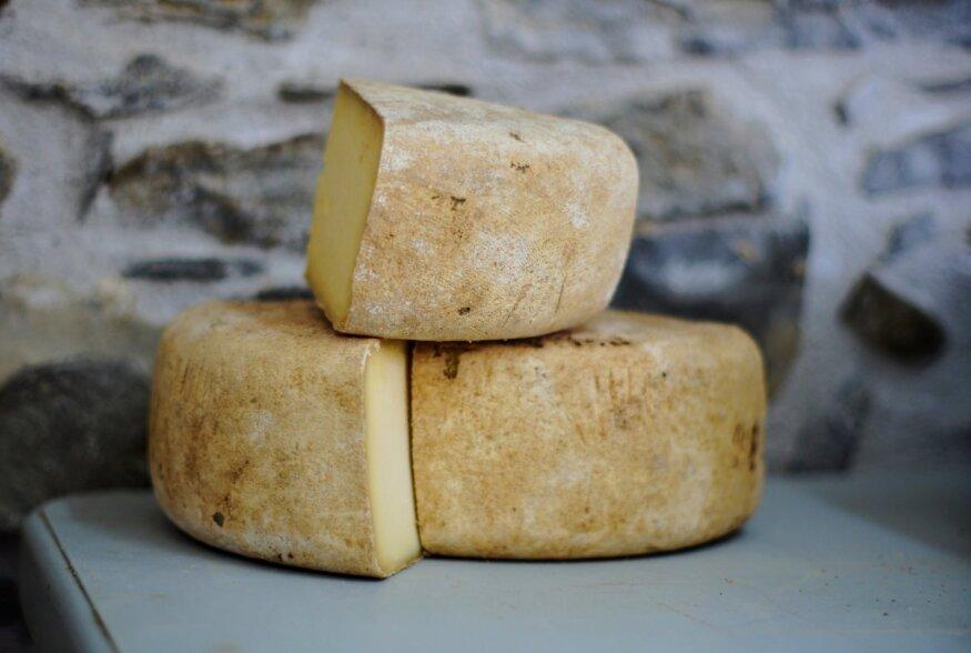 Juustud sünnivad karjamaal: kuidas saadakse juustude kuningat Parmigiano Reggiano't