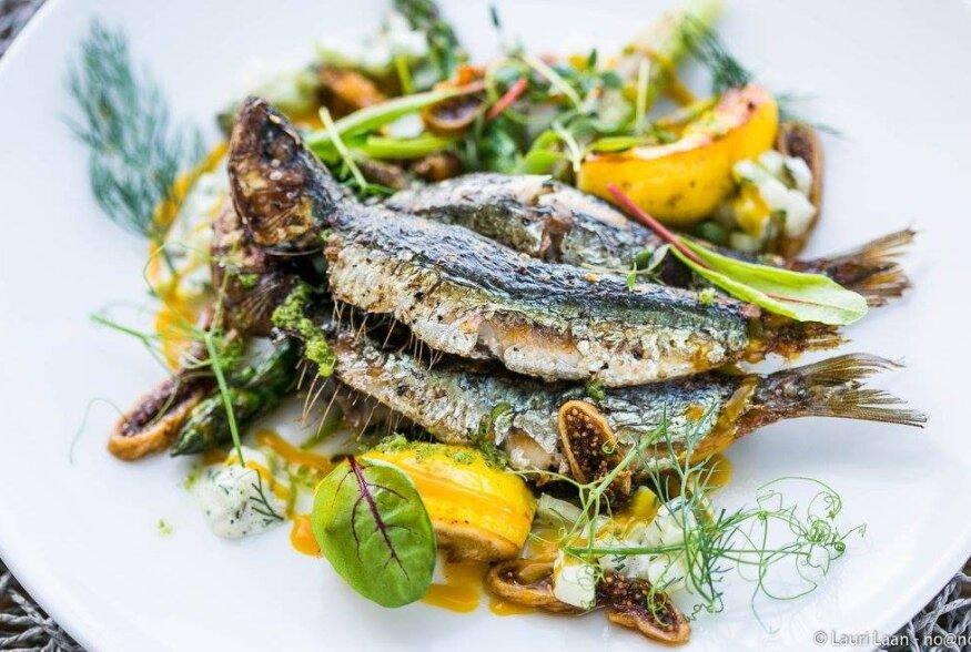 Homme.ee kutsub õhtusöögile restorani Sardiinid, kingi endale õhtu täis maitseelamusi!