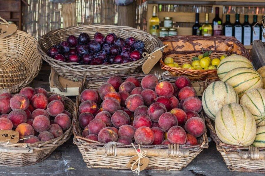 KUS SÖÖME LÕUNAT? | Toscana turgude köök: Giulia. Omadele Juls.