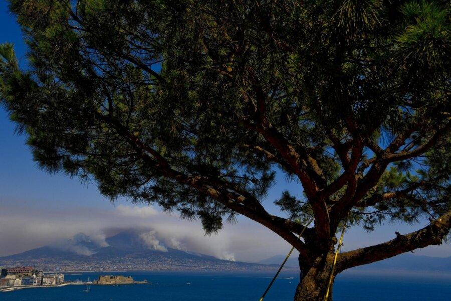 VIDEO ja FOTOD   Itaalia on kimpus hiiglaslike metsapõlengutega! Ka Vesuuv on mattunud tossupilve
