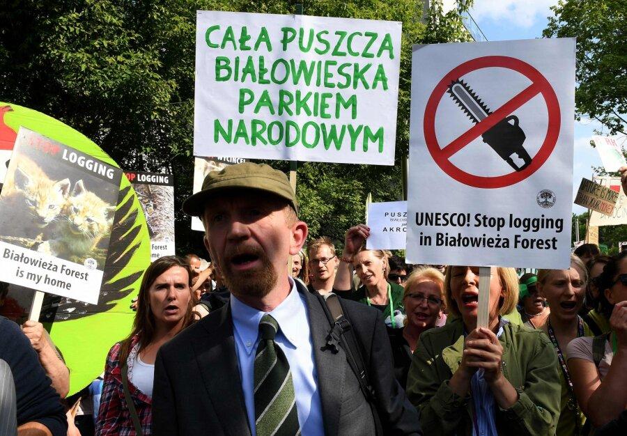 Польша настаивает на надобности  вырубки Беловежской пущи