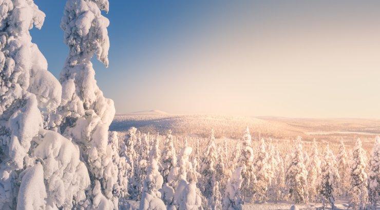 Eesti kurdid päästis Lapimaal külma käest Soome päästjate kiire tegutsemine