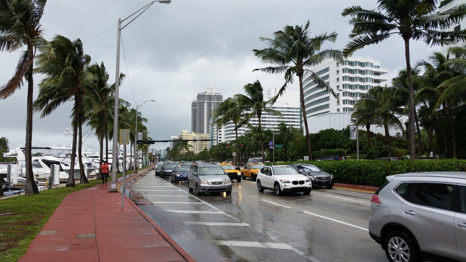 Miamis, The</name></artist><artist><name>Lou Deprijck* Lou - Vamos A La Playa